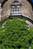 Kasteel - toren stock fotografie