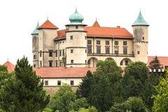 kasteel van de 14de eeuw het middeleeuwse Nowy Wisnicz, Polen royalty-vrije stock afbeeldingen