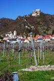 Kasteel van Durnstein met wijngaard Oostenrijk, Europa Stock Foto's
