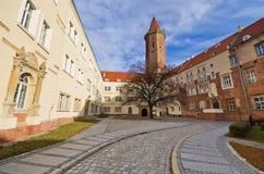 Kasteel van Legnica, Polen stock foto's