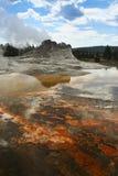 Kasteelgeiser, het Nationale Park van Yellowstone in Wyoming Royalty-vrije Stock Afbeeldingen