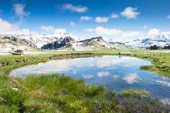 Kasteelheuvel, de reisaantrekkelijkheid van Nieuw Zeeland stock foto
