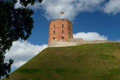 Kasteelheuvel, Gediminas-Toren, Vilnius royalty-vrije stock foto