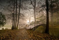 Kasteelpark in Pszczyna, Polen royalty-vrije stock afbeelding