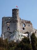 Kasteelruïnes in Mirow Royalty-vrije Stock Foto's