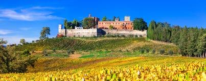 Kastelen en wijngaarden van Toscanië, het gebied van de Chiantiwijn royalty-vrije stock foto
