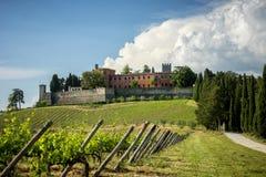 Kastelen en wijngaarden van Toscanië, het gebied van de Chiantiwijn van Ital royalty-vrije stock foto's