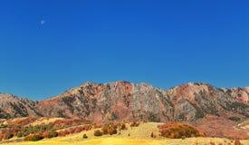 Kasten-ältere Schluchtlandschaftsansichten, populär bekannt als Sardinen-Schlucht, nördlich Brigham Citys innerhalb der Westhänge lizenzfreie stockfotografie