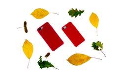 Kasten für Telefonabdeckung für Smartphone Stockfotos