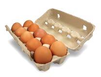 Kasten mit 10 Eiern oben Stockfotografie
