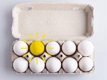 Kasten mit Eiern Lizenzfreie Stockfotografie