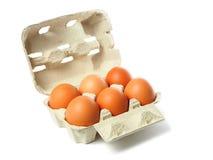 Kasten mit Eiern auf Weiß Stockfotografie