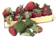 Kasten mit Erdbeeren Lizenzfreies Stockfoto