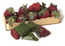 Kasten mit Erdbeeren und zwei von ihnen draußen Lizenzfreie Stockfotografie