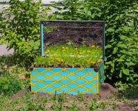 Kasten mit gelben Blumen Lizenzfreie Stockfotos