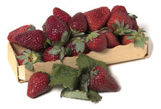 Kasten mit rohen Erdbeeren Stockfotos