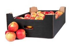 Kasten von bereitem zu den Verkaufs-Meister-Äpfeln auf weißem Backgroun stockfotos