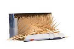 Kasten von Toothpick lizenzfreies stockfoto