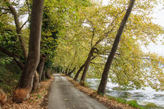 Kastoria Grekland Fotografering för Bildbyråer