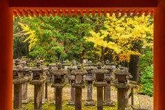 Kasuga Taisha i Nara, Japan Arkivfoton