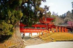 Kasuga Taisha Shinto Shrine, Nara, Japan Royalty Free Stock Photography