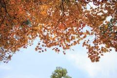 Kasumiga-ike Pond at Kenrokuen Garden in Kanazawa Stock Photos