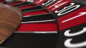 Kasynowa ruletowego koła piłka uderza 29 dwadzieścia dziewięć czerni zdjęcie wideo