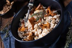 Kaszotto- połysku risotto od jęczmiennych groats z pieczarkami obrazy royalty free