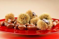 kasztany matrycują czerwonego cukierki Obraz Stock