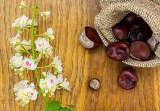 Kasztany w burlap i kwiacie na drewnie textured Zdjęcie Stock