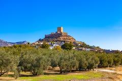 Kasztel Alcaudete, prowincja Jaen, Andalusia, Hiszpania otaczał oliwnymi gajami obraz stock
