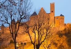 Kasztel Carcassonne w Francja Obraz Stock