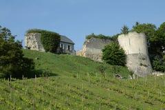Kasztel i winograd w Aisne, Francja obraz stock
