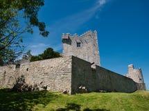 Kasztel na Lough Leane jeziorze blisko Killarney zdjęcia royalty free