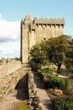 Blarney kasztel. co. Korek. Irlandia Obrazy Royalty Free