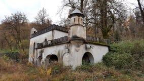 Kasztel ruiny otaczać z roślinami i drzewami obraz royalty free