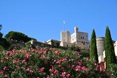Kasztel w Monaco Zdjęcia Royalty Free