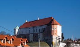 Kasztel w Sandomierz, Polska - fotografia stock