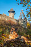 Kasztel w wiosce Nevicke, Ukraina fotografia stock