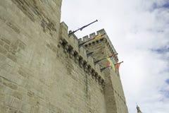 Kasztel z flaga Obrazy Royalty Free