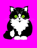 Kat_001. Framework for accommodation of advertising, a publicity board with the image of a cat Stock Image