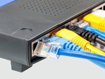 Kat 5 kabels in veelvoudige kleuren in router Royalty-vrije Stock Afbeelding