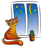 Kat bij het venster stock illustratie