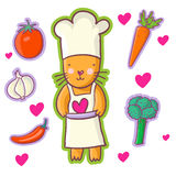 Kat - Chef-kok Royalty-vrije Stock Afbeeldingen
