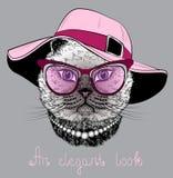 Kat in de glazen en de roze hoed Stock Afbeeldingen