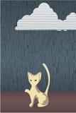 Kat in de regen. Royalty-vrije Stock Afbeelding