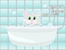 Kat die bad neemt Stock Afbeeldingen