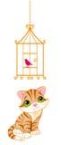 Kat die de vogelkooi bekijken Stock Afbeelding