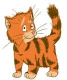 Kat die op een Kei wordt gebogen ectorillustratie van Huisdieren Royalty-vrije Stock Foto's
