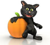 Kat die op een pompoen leunt Stock Afbeeldingen